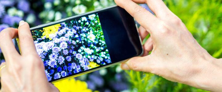 8. September 2021 – Bessere Fotos mit dem Smartphone